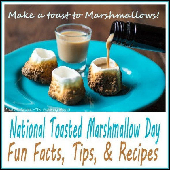 National Toasted Marshmallow Day